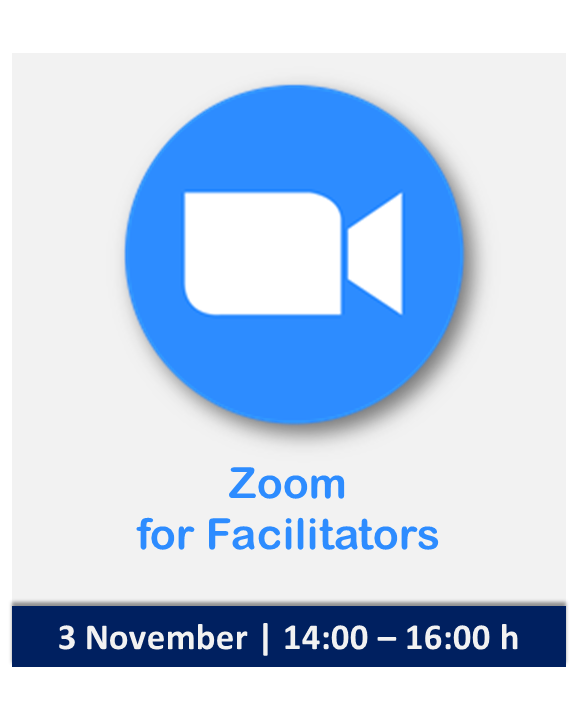 Zoom as a Facilitator | Nomadic IBP